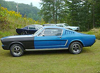 1965 Mustang Fastback - picture 4
